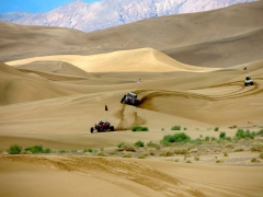 April Dune Pic of the Month
