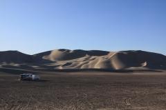 Sunday AM- cleaned up dunes!