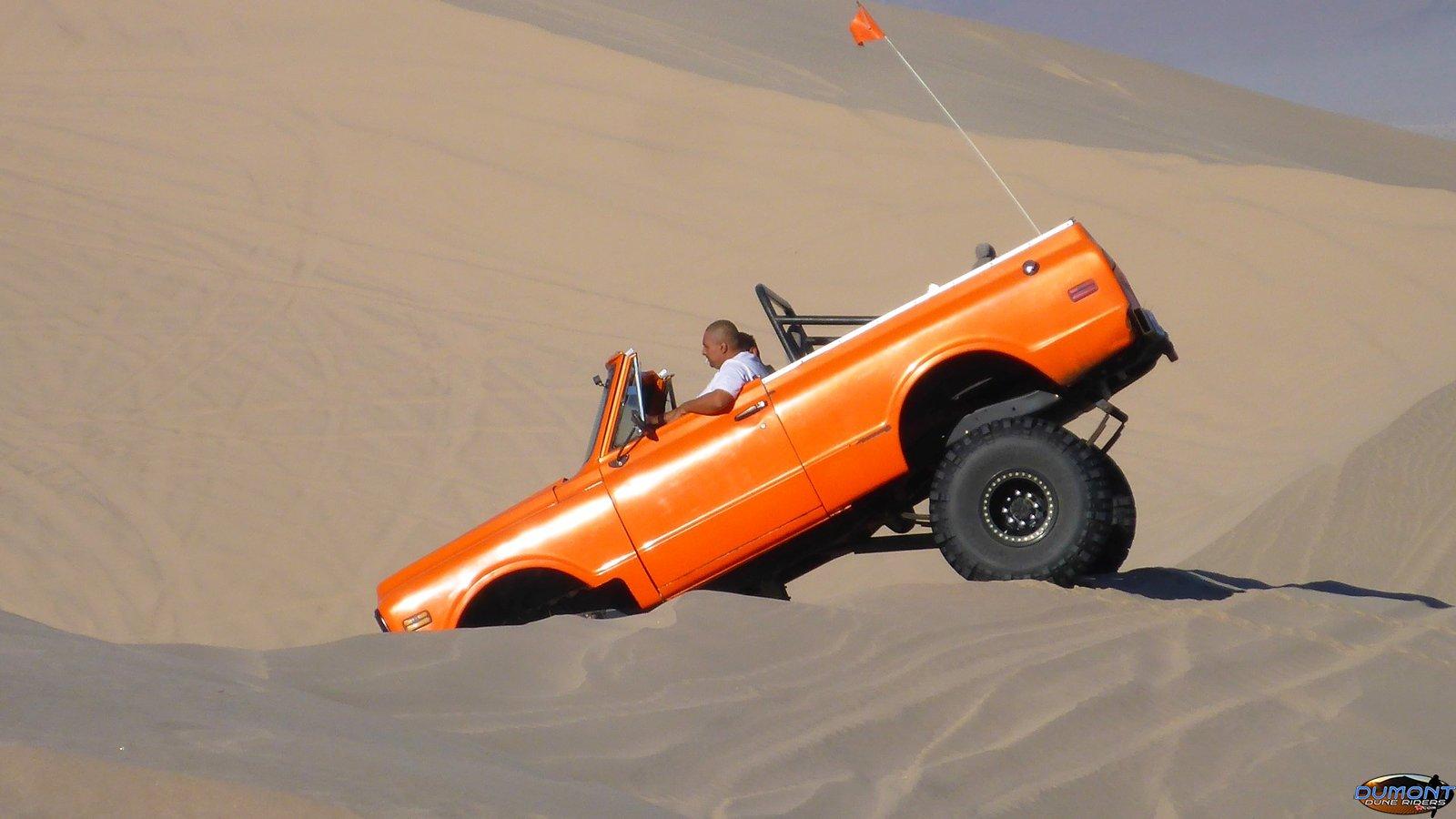 Orange Blazer playing the sand, Halloween 2017
