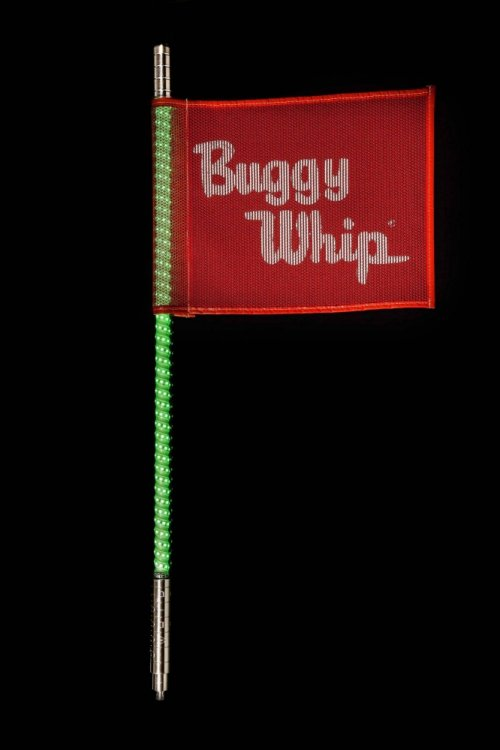 buggy whip.jpg